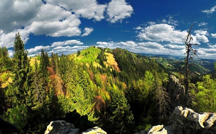 Вижницкий национальный природный парк