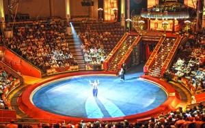 Концерты и спектакли в Днепропетровске: Созвездие цирков мира