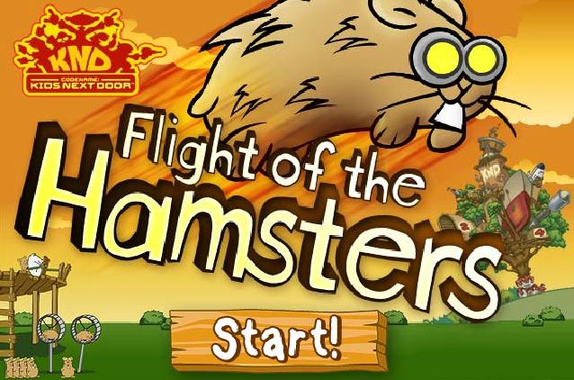 hamster flight
