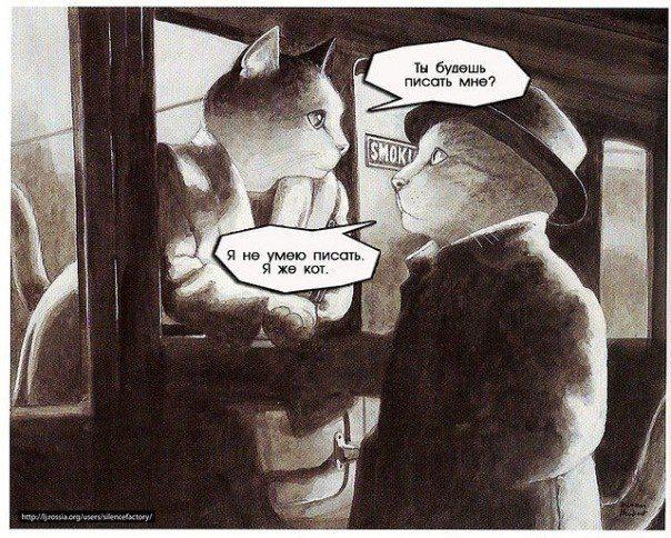 Коты. Рисунки