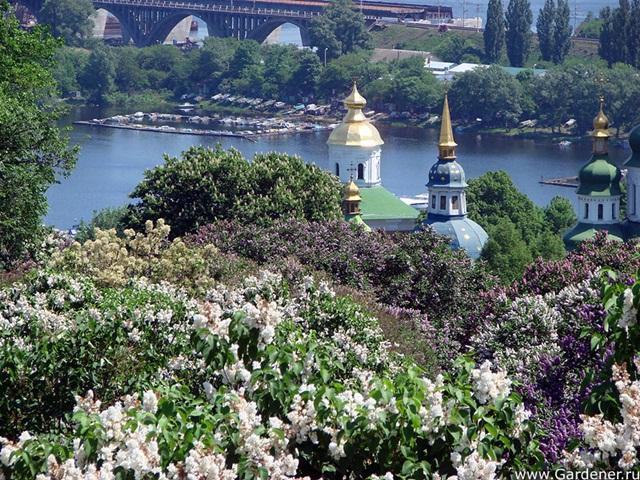 Национальный ботанический сад им. Гришко. Киев.