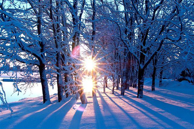 Афоризмы про Зиму