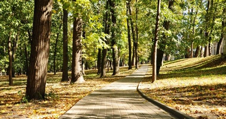 Парк Киевского политехнического института