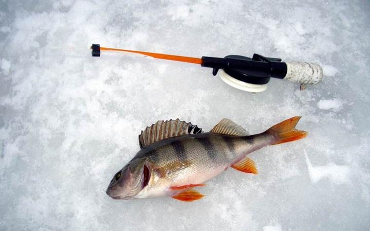 зимняя русская рыбалка играть бесплатно