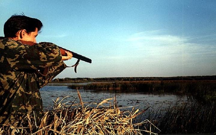 Охота на зайца, кабана, уток. Видео. Смотреть онлайн