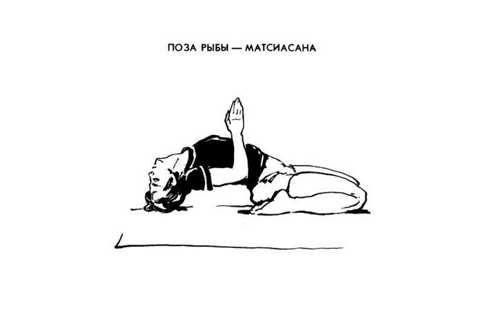 Хатха йога. Упражнения и асаны