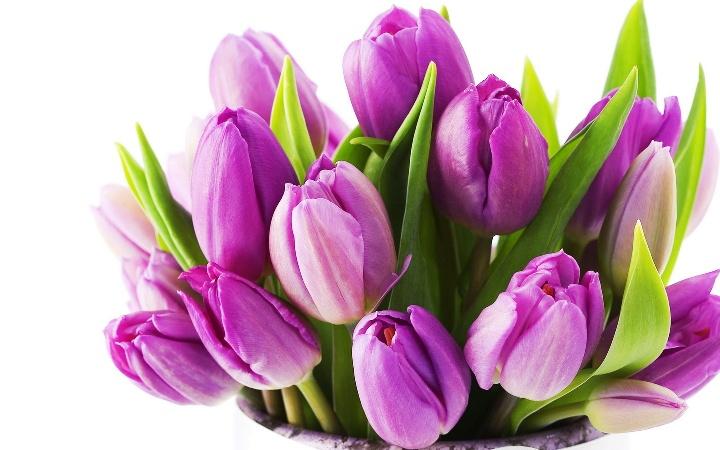 что подарить на 8 марта, подарки на 8 марта