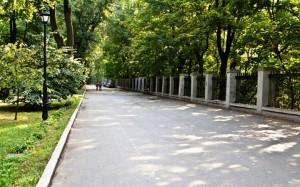 10 парков Киева, которые нужно посетить весной