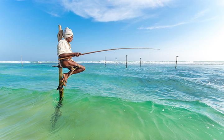 Рыбалка. Шри-Ланка. Природа. Отдых