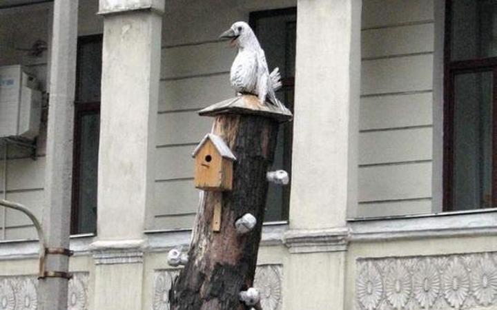 Общежитие белых ворон