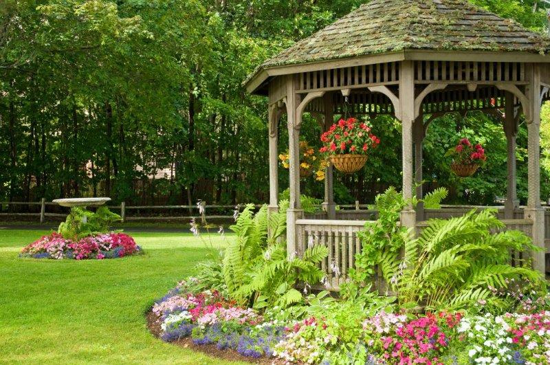 Как выбрать цветы, чтобы украсить беседку