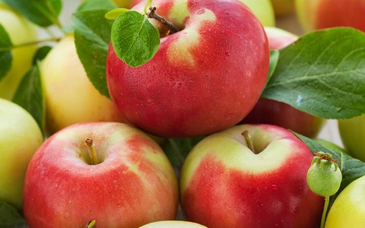 Праздник второго спаса (Яблочный спас). 19 августа