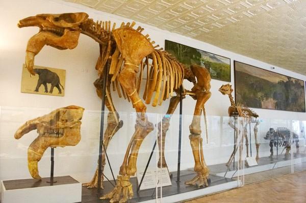 Музейный уик-энд