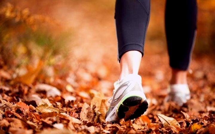 Занятие бегом осенью: особенности и правила