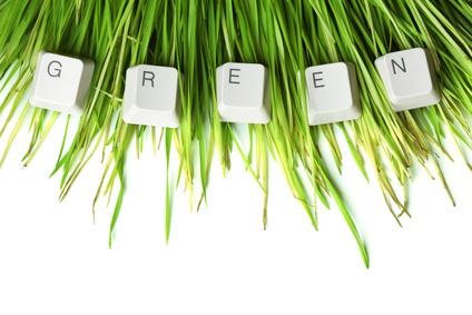 Зеленые растения на рабочем столе
