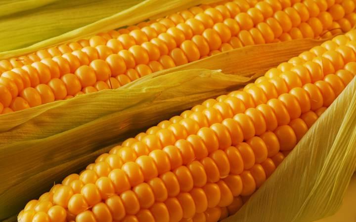 Кукуруза укрепляет сердце