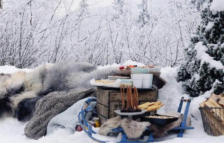 Как организовать пикник зимой