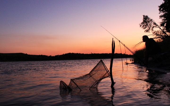 Идея на выходные: идем на ночную рыбалку