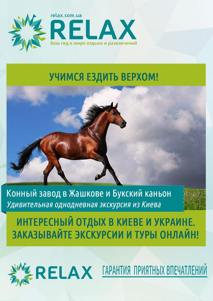 Экскурсия на конный завод в Жашков