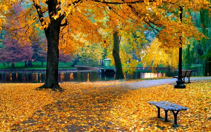 10 дел, которые нужно сделать осенью