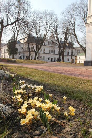 В Софию пришла весна