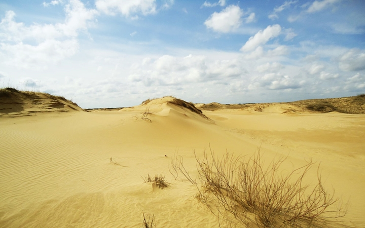 Неизвестный Херсон + Олешковские пески