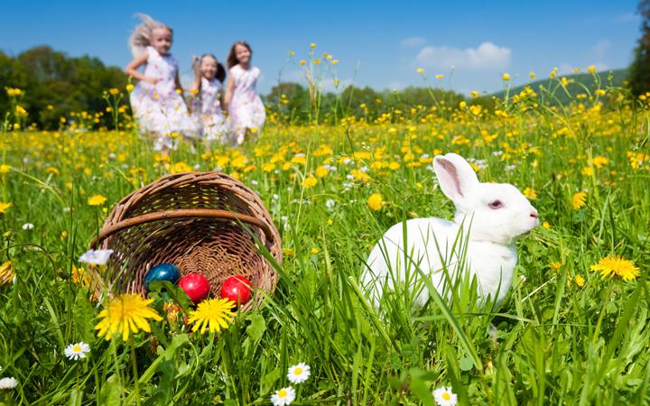 Пасхальный кролик и крашанки