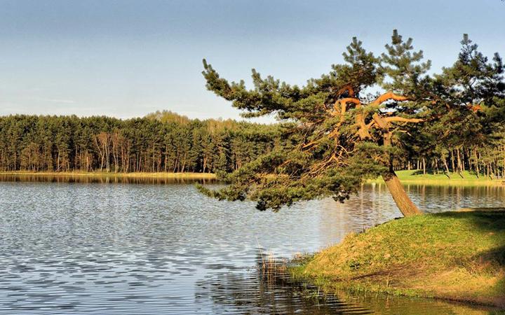 Тур по Украине: Шацкие озера и Луцк