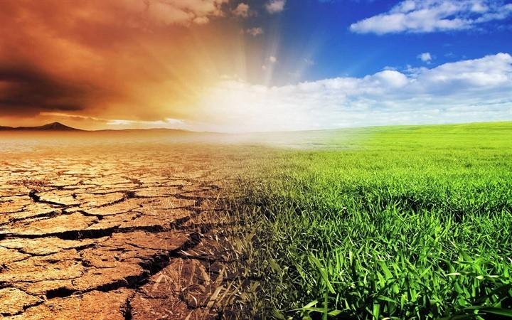 Опустынивание природа проблемы
