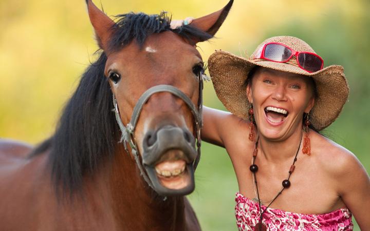 Кони. Люди. Лошади. Позитив. Смех
