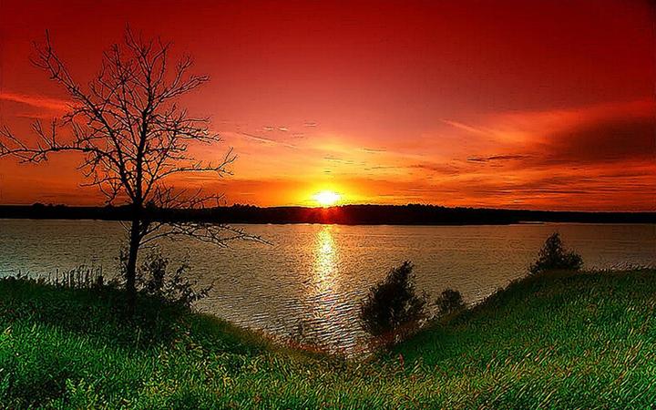 Лето. Природа. Озеро. Закат.