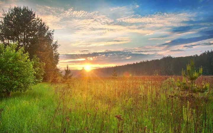 Природа покой релаксация