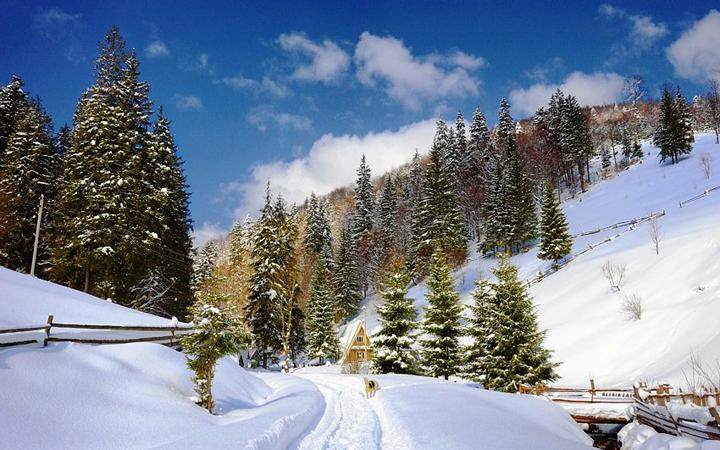 Буковель. Карпаты. Зима. Отдых