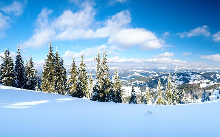 Драгобрат. Карпаты. Природа. Зима