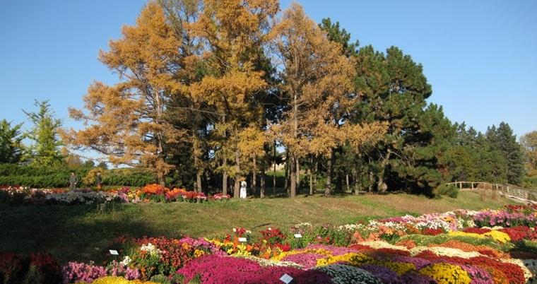 Национальный ботанический сад имени Гришко