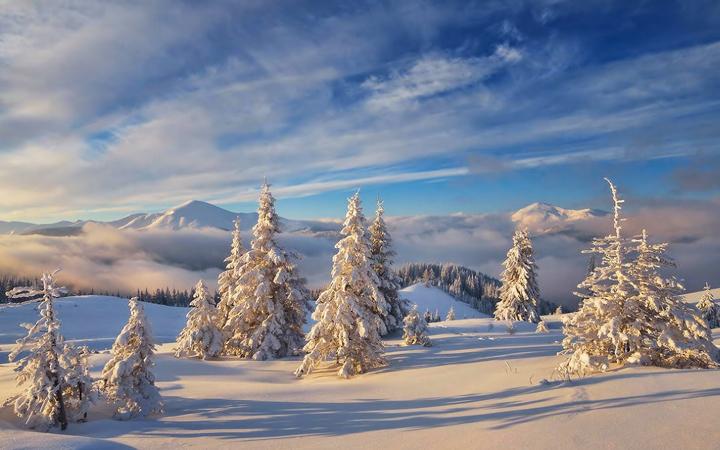 Карпаты. Природа. Зима