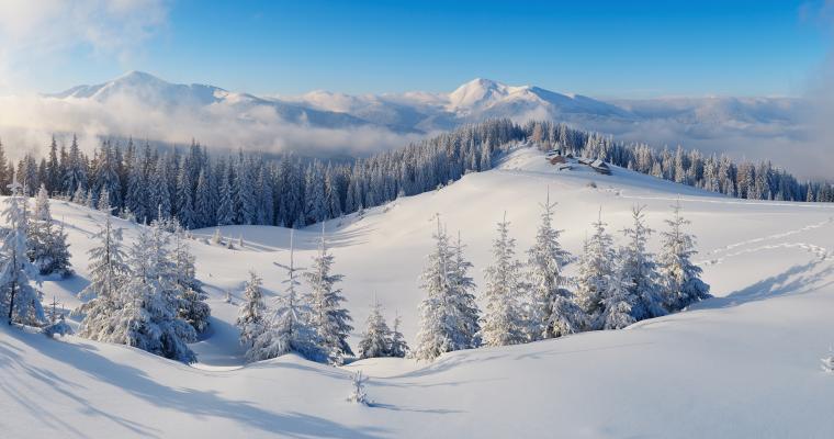 Тур по Украине: Дегустационно-термальный тур «Феерии новогоднего Закарпатья»