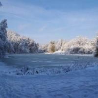 Зимняя сказка в Голосеево. Чудеса обители волхвов