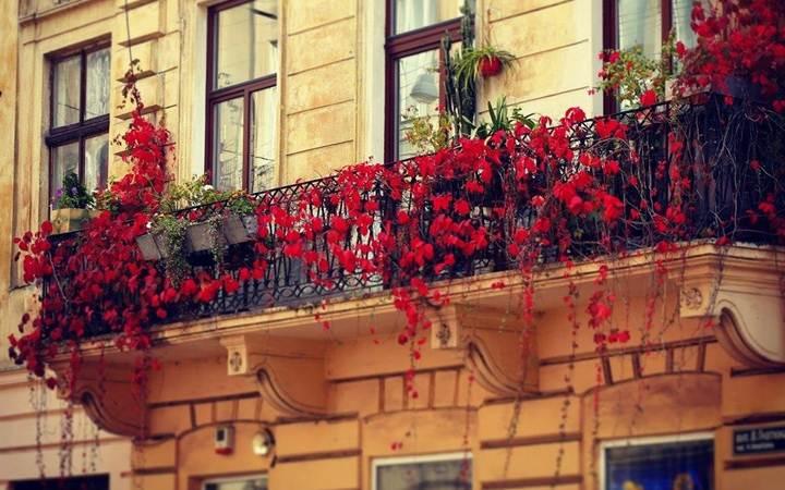Праздник весны во Львове