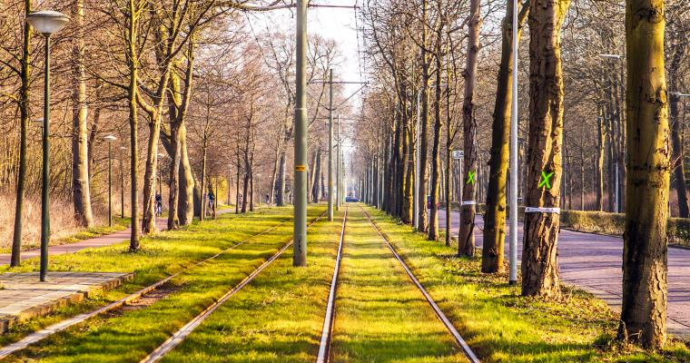 Экскурсия по Киеву: Необычные истории в обычном киевском трамвае