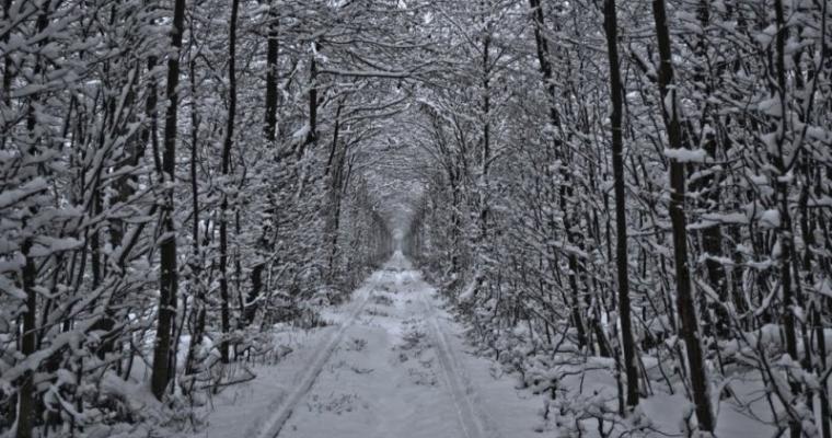 Тур по Украине: Новый год в Луцке + Замки Волыни