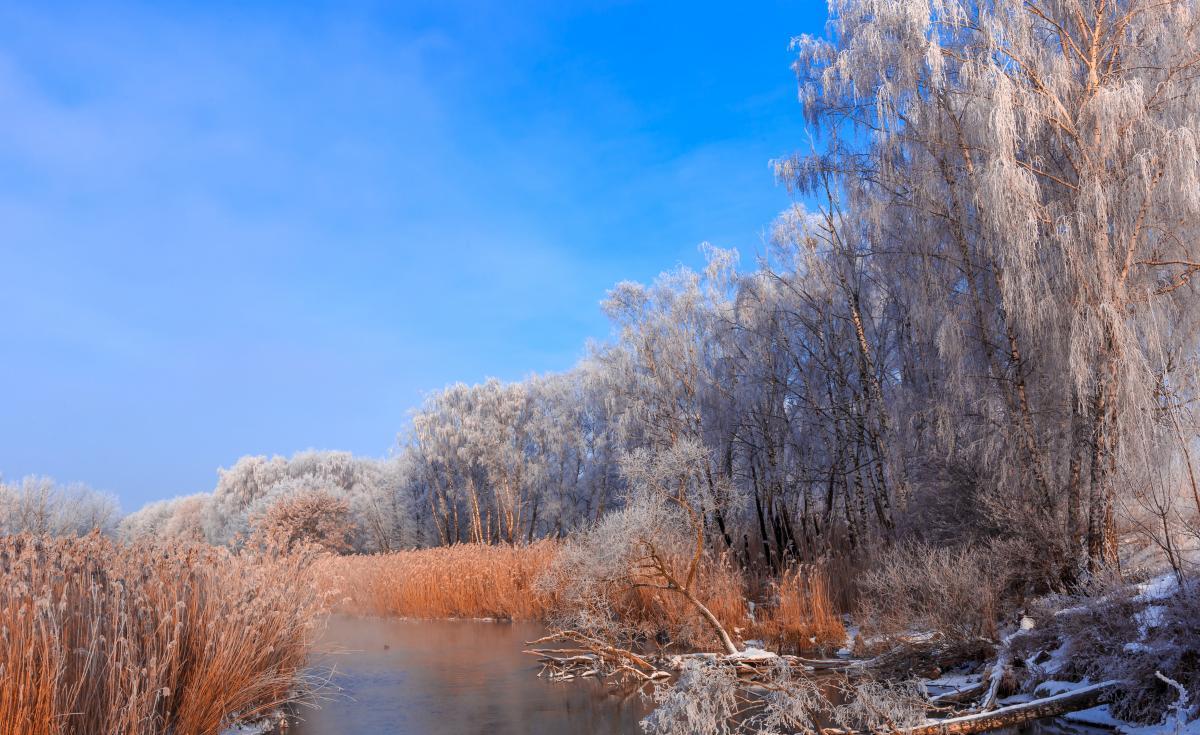 Тур по Украине: Оливье в Межреченском — новогодний тур