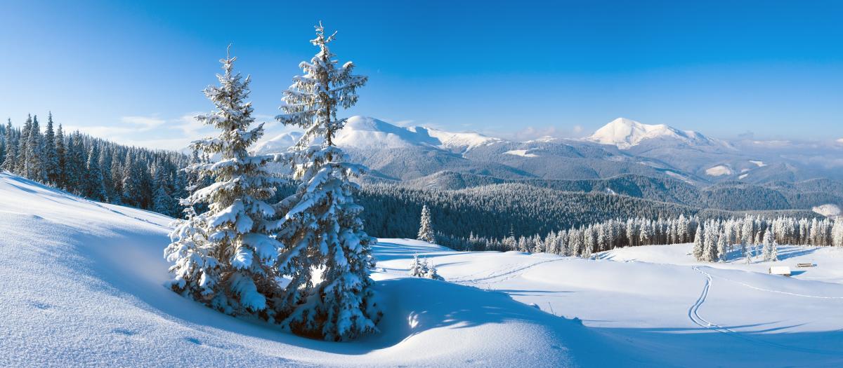 Тур по Украине: Зимнее восхождение на Говерлу