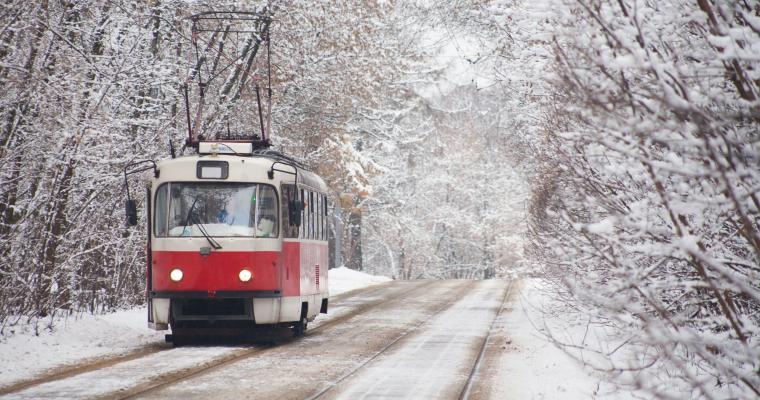 Экскурсия по Киеву: Новогодние истории по дороге в Пущу-Водицу