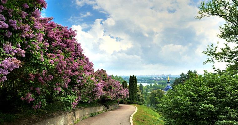Национальный ботанический сад им. Н. Н. Гришко (Киев)