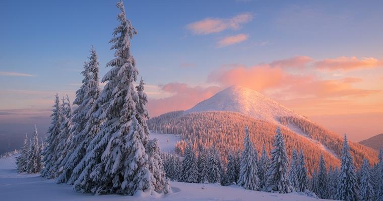 Если отдыхать зимой — то только с «Покупон» в Карпатах