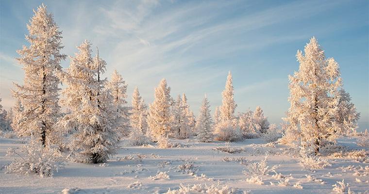 Куда поехать в декабре