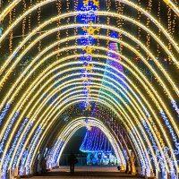 Новый год в Ивано-Франковске + Карпаты