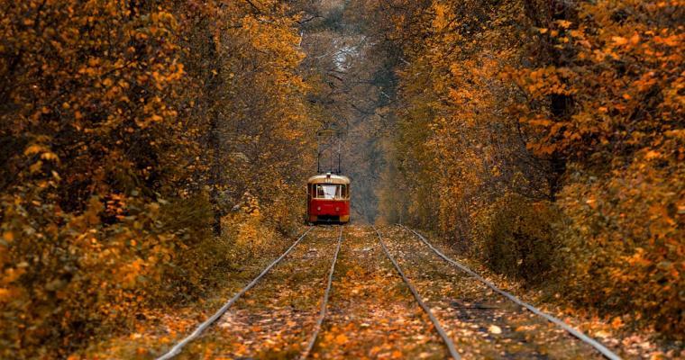 Екскурсія в трамваї фото